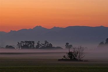 Morning mist in the Mangfalltal, Bavaria, Germany