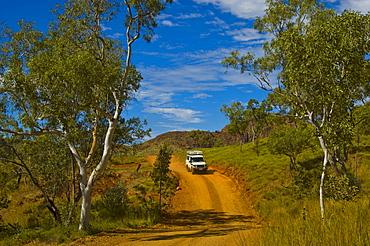4x4 vehicle on a dirt road in the Bungle Bungle, Purnululu National Park, Australia