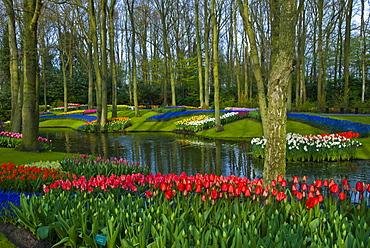 Keukenhof Gardens, Holland, the Netherlands, Europe
