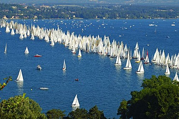 Starting line of a sailing boat race, Lac Leman Switzerland