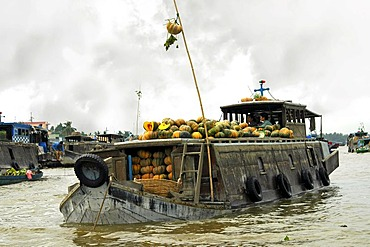 Junk with pumpkins , Cai Rang Floating Market, Can Tho City, Vietnam