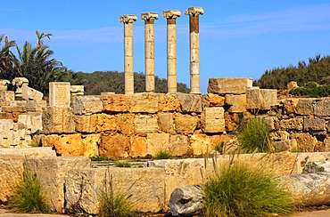Four ancient columns with ionic capital, Ruins of the Roman City Leptis Magna, Libya