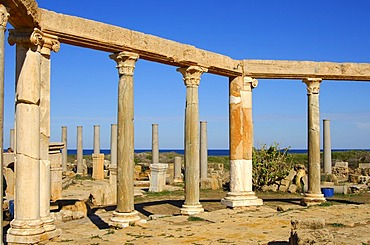 Ancient market place, Roman ruins of Leptis Magna, Libya
