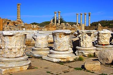 Ancient capitals, ruins of the Roman City Leptis Magna, Libya