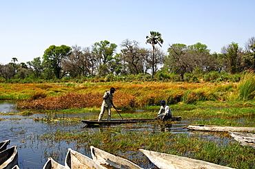 Locals in a Mokoro canoe, Okavango-Delta, Botswana