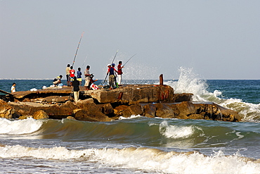 Sea anglers at the Gulf of Oman, Sultanate of Oman