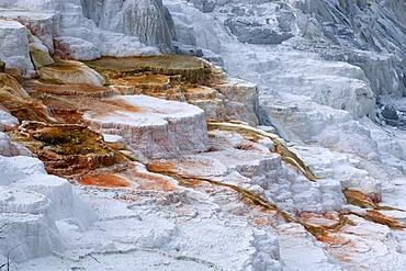 Mammoth Hot Springs, Yellowstone Nationalpark, Wyoming, USA, United States of America