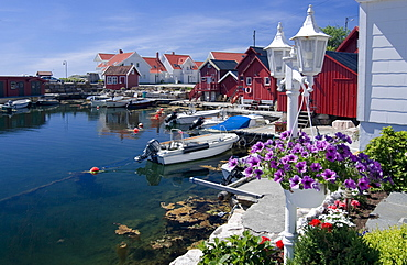 Red and white wooden houses with flower decorations, housing estate near Lindesnes, Vest-Agder, southern Norway, Scandinavia