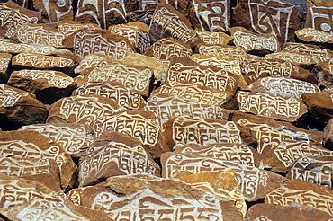 Mani rocks with Buddhist inscriptions, Himalayas, Ladakh, India