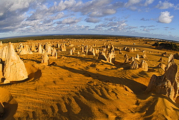 Pinnacles Desert, Nambung National Park, Kalbarri Region, Western Australia, Australia