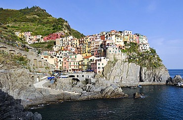 Village of Manarola on a steep coastal cliff, Liguria, Cinque Terre, Italy, Europe