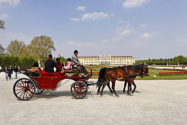 Horse-and-buggy in front of Schoenbrunn Palace, Vienna, Austria, Europe