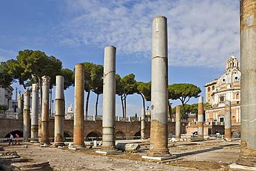 Columns of Basilcia Ulpia on the Forum of Trajanus, Rome, Italy, Europe