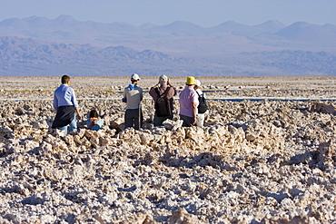 Tourists observing flamingos at Reserva Nacional los Flamencos at the Salar de Atacama salt flats, Region de Antofagasta, Chile, South America
