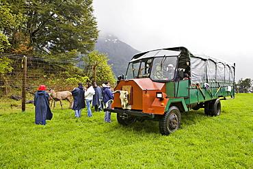 Off-road truck used for sightseeing, Lago Todos los Santos, Region de los Lagos, Chile, South America