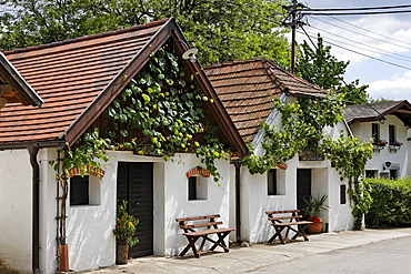 Wine cellars along a narrow street in the town of Hadres, Weinviertel (wine region), Lower Austria, Austria, Europe