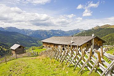 Weissalm alpine pasture, Grossarltal, Salzburg, Austria, Europe