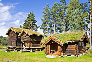 Thatch-roofed wood houses in Jondalen, Norway, Scandinavia, Europe