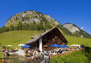 Igltalalm alpine pasture, Grossarltal, Salzburg, Austria, Europe
