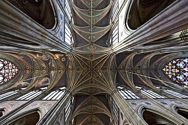 Ceiling, Votivkirche Church, neo-Gothic basilica in Vienna, Austria, Europe