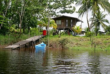 Dock on the Kamuni River, Guyana, South America