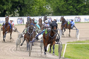 Trotting race, trotters, Daglfing, Munich, Upper Bavaria, Bavaria, Germany, Europe