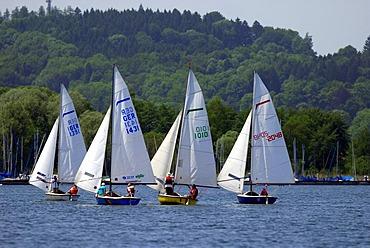 Sailing boats at the Lake Chiemsee, Prien, Upper Bavaria, Bavaria, Germany