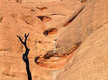 Rock formation with water trails in the Olgas, Kata Tjuta National Park, Northern Territory, Australia