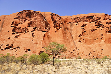 Detail of the holey texture of the Uluru or Ayers rock, Kata Tjuta National Park, Northern Territory, Australia