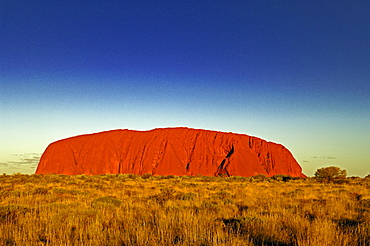 Ayers rock, uluru, while sundown, australia