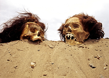 Inca graves, skulls, Inca mummies, archaeological excavations, Puruchuco-Huaquerones, near Lima, Peru, South America