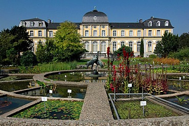 Castle Clemensruh (Poppelsdorf Castle) and crane fountain in the Botanical Garden Bonn