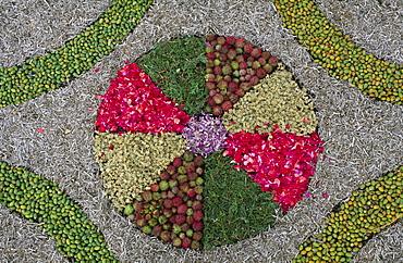Detail of a carpet of flowers for Corpus Christi, Mazo, La Palma, Canary Islands, Spain