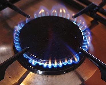 Gas stove, flame