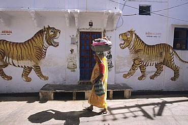 Woman with laundry, Udaipur, India