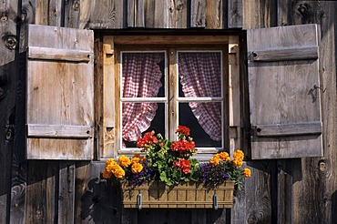 CHE, Switzerland, Canton St. Gallen : Holiday region Heidiland, Pizol mountain. Alp, mountain hut