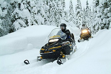 CAN, Canada , Quebec : Snowmobiles in the region of Saguenay - Lac Saint Jean, Monts Valin