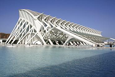 ESP, Spain, Valencia : Ciudad de las Artes Y de las Ciencias, City of arts and sciences. Museo de las Ciencias Principe Filipe
