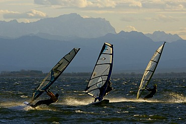 Windsurfer on the Ammersee in evening light in front of the Zugspitze, Bavaria, Germany