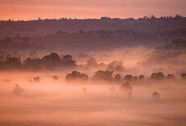 Morning fog covering the backcountry, outback of Byron Bay, New South Wales, Australia