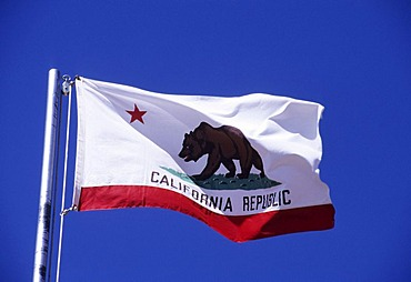 USA, United States of America, California: the flag of California.