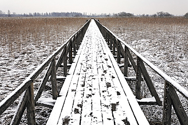 Boardwalk with footprints, Federsee, Bad Buchau, Upper Swabia, Baden-Wuerttemberg, Germany, Europe