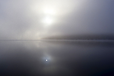 Early morning mist over Lake Schluchsee in winter, Hochschwarzwald, Upper Black Forest, Baden-Wuerttemberg, Germany, Europe