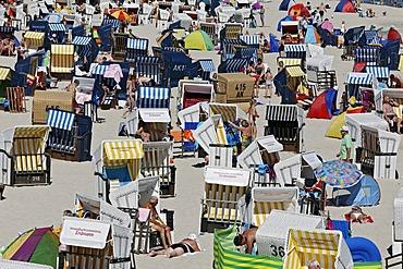 Crowded beach with beach chairs, Heringsdorf resort, Usedom Island, Mecklenburg-Western Pomerania, Germany, Europe