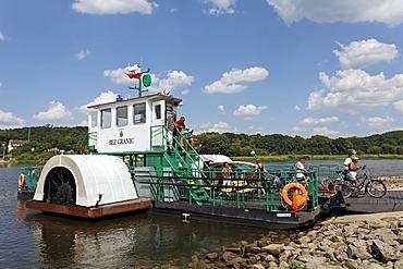 Cyclists leaving the Oder ferry, motorised paddlesteamer, border crossing, Guestebiese, Gozdowice, Neulewin, Oderbruch region, Maerkisch-Oderland district, Brandenburg, Germany, Europe