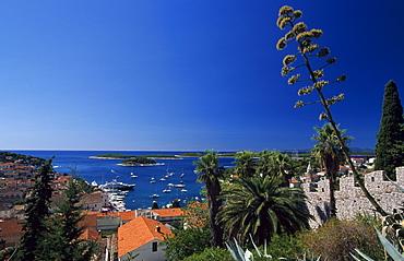 Hvar Island, Dalmatia, Dalmatian Coast, Croatia