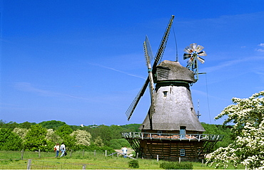 Windmill at the outdoor or open-air museum in Molfsee, Schleswig-Holstein, Germany, Europe