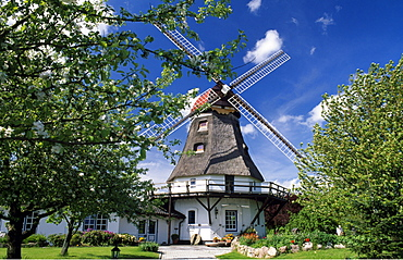 Windmill in Groedersby on the Schlei River, Schleswig-Holstein, Germany