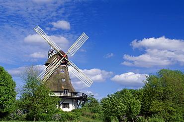 Windmill, Pommerby in the Angeln region on the Schlei River, Schleswig-Holstein, Germany, Europe