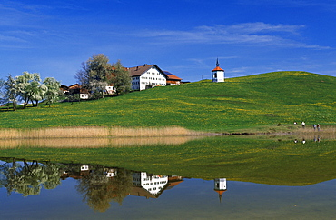 Hergatsrieder Lake, Allgaeu, Bavaria, Germany, Europe